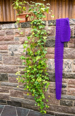 Photo shows a bright purple scarf hanging on a stone wall next to a trailing vine plant.